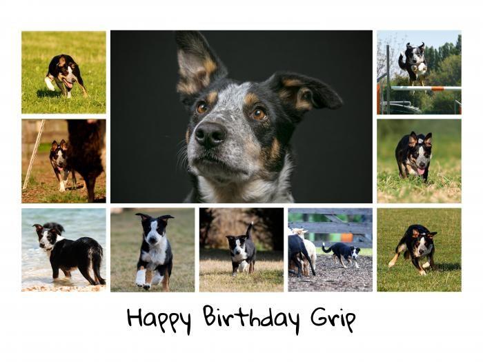 Geburtstag_Grip_2020.jpg